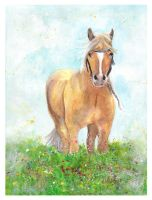 Free in the field ~ by Paintwick