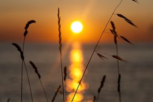 bokehed sun by herbstkind