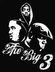 The Big 3 by DJC87