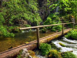 Bridge At The Spring by Burtn