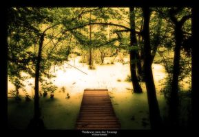 The Walkway into the Swamp by Khaosprinz