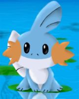 Mudkip by Hypostomus