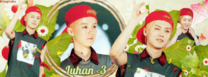 [Cover Facebook] Hannie's Request - Luhan by YongYoMin