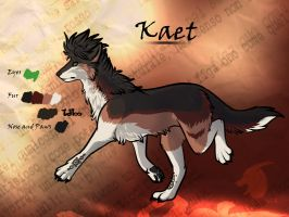 Kaet reference by thelunapower