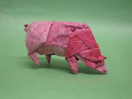 Pig Dissection by Blue-Paper