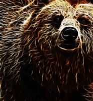 .: glowing bear :. by FrkDub