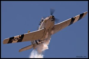 T-34 Mentor by AirshowDave