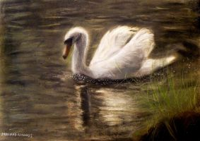 Swan - Pastel Painting by masaad
