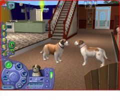 Sims 2 Pets Beethoven and Missy by Anime210freak