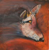 Coyote Face by Dagonet85