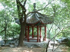 Forest Gazebo by Shobie-stock