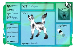 Tidepaw Reference sheet *NEW* by Gh0stys