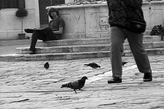 Watching, Walking, Feathers by pfflmp