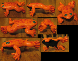 Aurum African Clawed Frog by DancingVulture