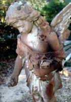 Grace Episcopal Angel by SalemCat