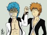 Bleach: Don't hit yourself by yuminica
