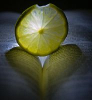 Lemon and Book by northloft
