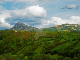 Green Symphony by Amatrice