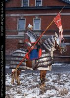 Old Russian Warrior Img. 017 by Reconstruction-Stock