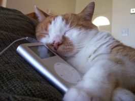 Tiggy with my ipod by corelila