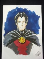 Red Robin by sirandal