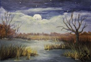 ACEO Moonlight Marsh by annieoakley64