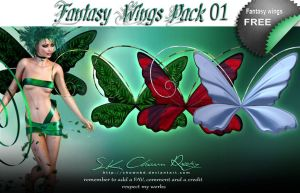 Fantasy Wings Pack 01 by SK-DIGIART