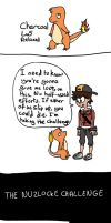 Nuzlocke: Six to a Team 6 by Sylars-Apprentice