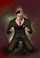 Two Face by Rolzor