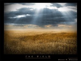 the field by nask0