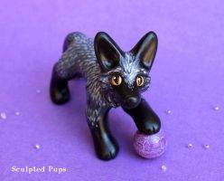 A Silver Fox with a Sphere of Magic by SculptedPups