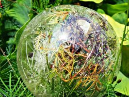 Life In A Chaotic Bulb by JeremyC-Photography