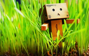 Danbo Wallpaper again by 69efan69