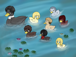 SNK ducks by icantdecideaname