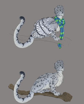 Snow Leopard Sphinx by Xan-Salstone