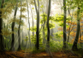 Sunlit Glade by Petrichora