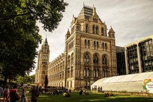 Natural History Museum by SimasVait