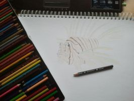 Lion Fish and Pencils by VGJekyll