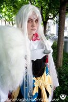 Sesshomaru - Lord of the West by Valdrein