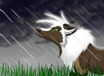 Rain by TheWolfFight