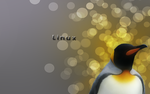 King Linux by Momez