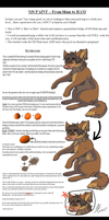 Blam to BAM - MS PAINT TUTORIAL by That-CrazyCat