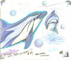 Striped Dolphin - For Cryslara by autumnalangel