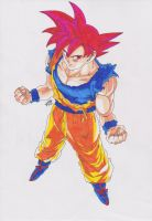 DRAGONBALL Z BATTLE OF GODS - GOKU SUPER SAYAN GOD by TriiGuN