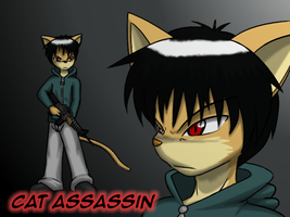 Cat Assassin, Redesign by vytalibus