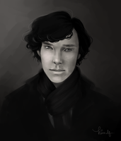 Sherlock by kimpertinent