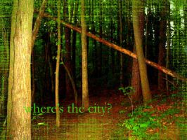 wheres the city by dontbemad