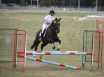 STOCK Showjumping 476 by aussiegal7