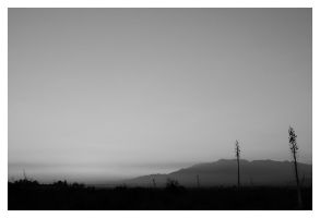 Evening BW by MakesMeLaugh