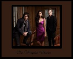 the vampire diaries by emilyz94